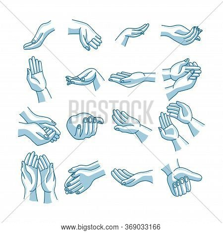 Hands Washing Sequence Illustration Vector Human Part