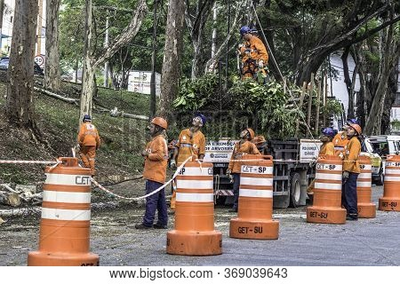 Sao Paulo, Sp, Brazil, Octover 11, 2017. Municipality Workers Take The Pruning Of Tree Removal In Ma