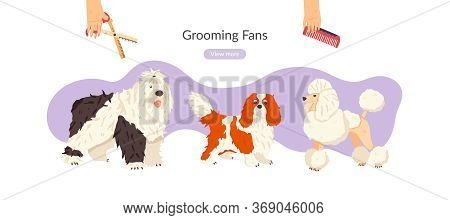 Grooming Fan Flat Vector Illustration. Pet Care Salon Landing Page Banner Template With Spaniel, Poo
