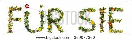Flower And Blossom Letter Building Word Fuer Sie Means For You