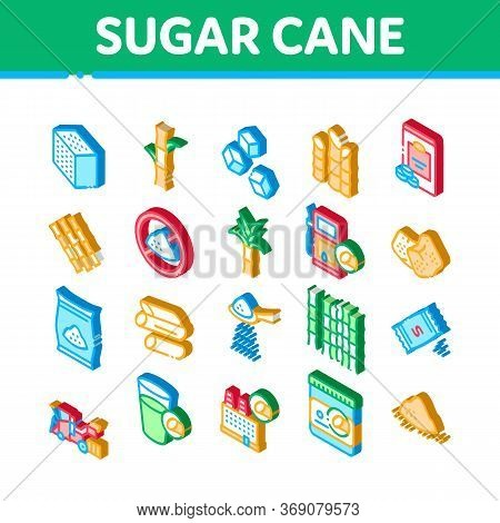 Sugar Cane Agriculture Icons Set Vector. Isometric Sugar Cubes And Package, Agricultural Harvest, Pl