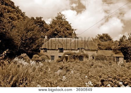 Sepia Of A Classic English Cottage - The Birth Place Of Thomas Hardy