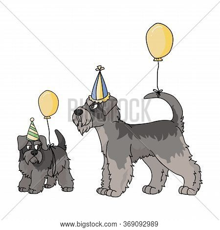 Cute Cartoon Schnauzer Dog And Puppy With Party Hat Vector Clipart. Pedigree Kennel Doggie Breed. Pu