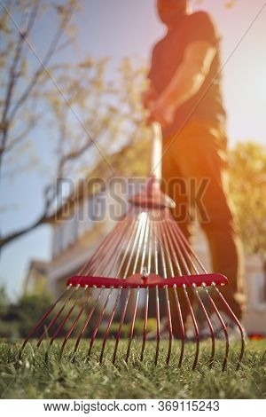 Unrecognizable Young Male In Casual Outfit Is Raking Green Grass Using Handheld Red Rake On A Lawn O