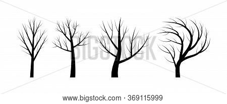 Naked Trees Silouettes. Black Objects On White Background. Vector Illustration.