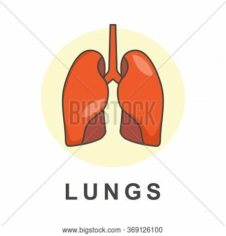 Lungs Flat Vector Design. Lungs Icon Vector. Lungs Icon. Internal Organs Of The Human Element, Lung