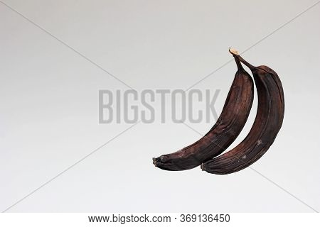 Two Rotten Blackened And Dried Bananas . Spoiled Food. The Concept Of Proper Food Storage. The Conce