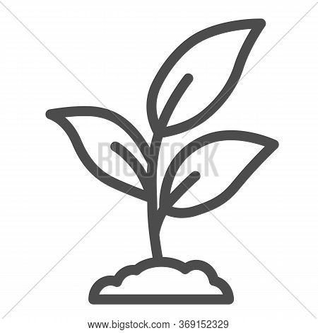 Plant Sprouts With Three Leaves Line Icon, Gardening Concept, Young Growth Sign On White Background,