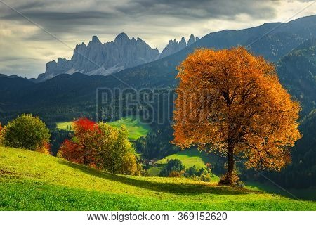 Beautiful Autumn Alpine Landscape, Colorful Deciduous Trees And Green Fields With High Mountains In