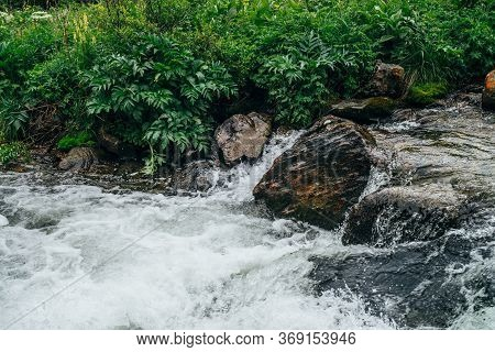Beautiful Landscape With Big Stones In Water Riffle Of Mountain River. Powerful Water Stream Among B