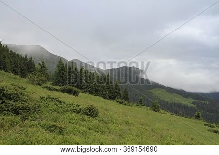 Carpathian Forest In The Fog. Ukrainian Carpathian Mountains, Ukraine, . Hiking Travel Outdoor Conce