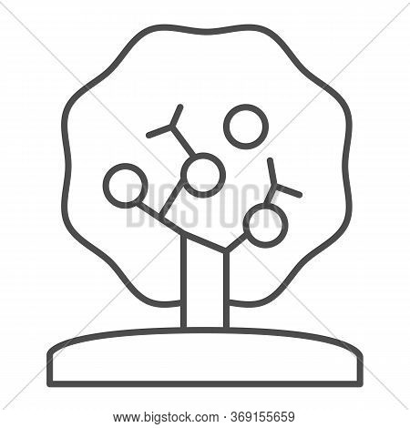 Apple Tree Thin Line Icon, Nature Concept, Tree Silhouette Sign On White Background, Apple Tree With