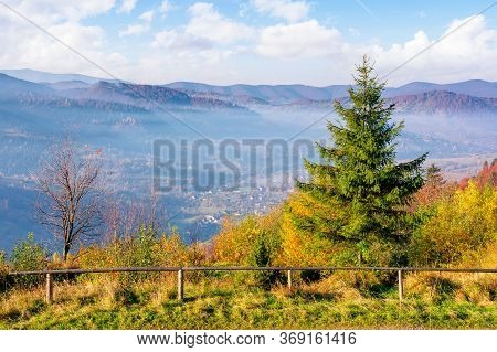Tree On Misty Morning In Mountainous Countryside. Beautiful View In To The Valley. Autumnal Foggy Su