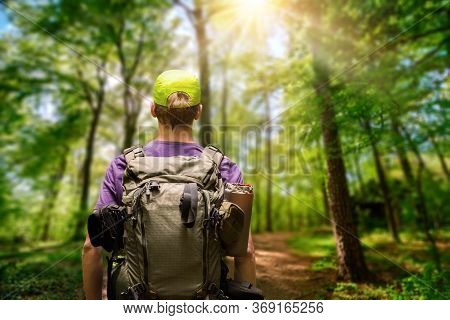 Male Hiker With A Backpack Exploring A Path In A Green Forest With The Sun Shining Above, Shallow Fo