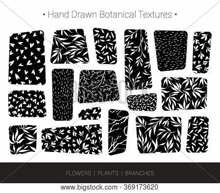 Original Botanic Textures, Greenery Backgrounds. Hand Drawn Vector Branch, Flower, Stem, Leaf, Twig
