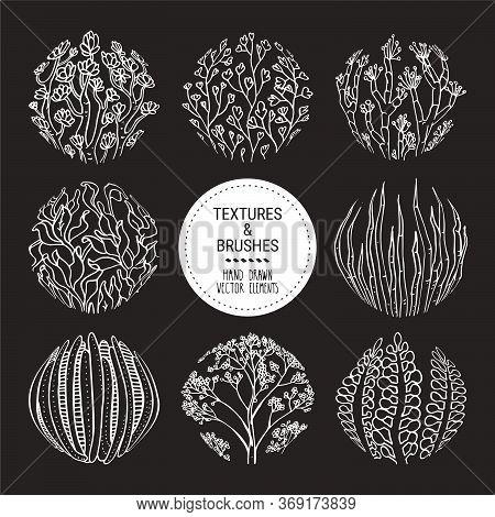 Floral Round Textures, Subtropical Plant Ornaments. Botanical Design Elements For Organic Branding,
