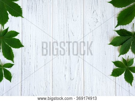 Chestnut Leaves On The Sides Of A Light Wooden Background. Spring Frame For Text With Chestnut Leave