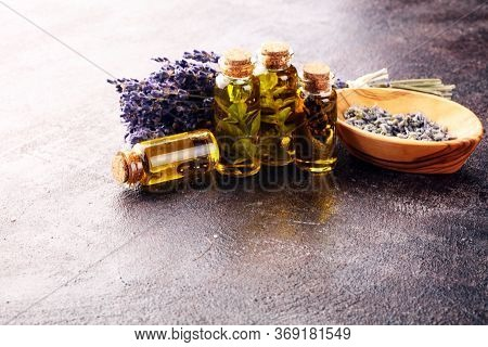 Fresh Herbs From The Garden And The Different Types Of Oils For Massage And Aromatherapy On Table Wi