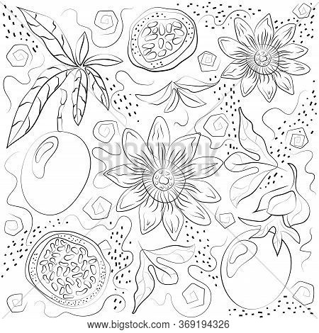 Black And White Passiflora Isolated On White Background.
