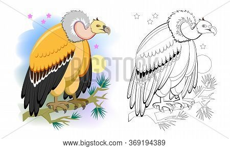 Colorful And Black And White Page For Coloring Book For Kids. Illustration Of A Cute Vulture. Predat