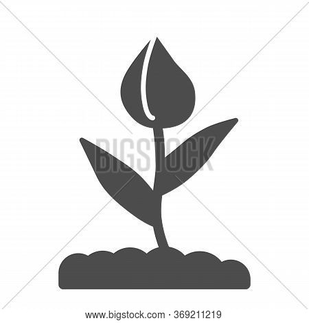 Flower Bud Solid Icon, Floral Concept, Closed Tulip Bud With Leaves Sign On White Background, Spring