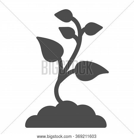 Seedling With Many Leaves Solid Icon, Nature Concept, Seeds Sprout In Ground Sign On White Backgroun