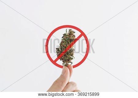 Hand Holding Medical Marijuana Bud With Not Allowed Sign, Isolated On White Background