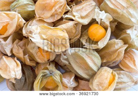 Pile Of Physalis