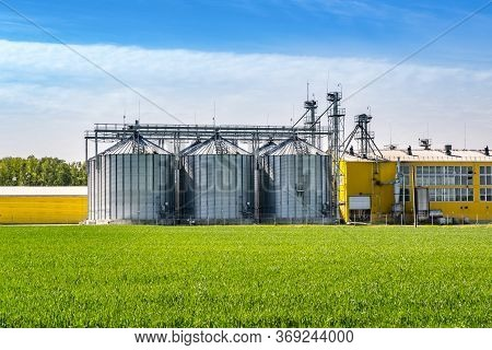 Agro-processing And Manufacturing Plant For Processing And Silver Silos For Drying Cleaning And Stor