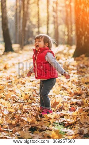 Little Cute Girl Rejoices In Autumn, Throws Up Leaves In The Autumn Forest On Sunny Day