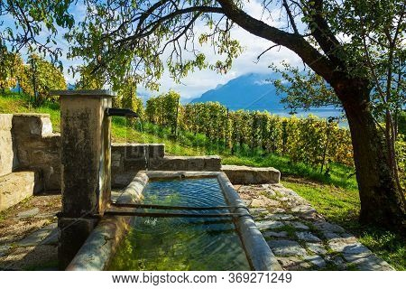 Lavaux, Switzerland: Fresh Water Source On Hiking Trail Among Lavaux Vineyard Tarraces In Canton Of
