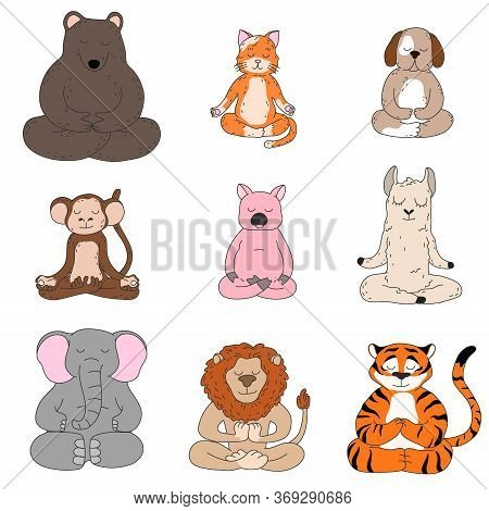 Cute Funny Animals Sitting And Meditating In Lotus Pose Vector Illustration