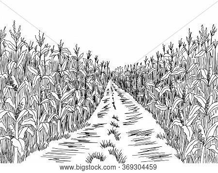 Cornfield Road Graphic Black White Landscape Sketch Illustration Vector