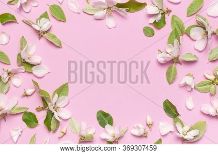 Spring Nature Background. Beautiful Blooming Spring Flowers With Green Leaves On Pink Background Fla