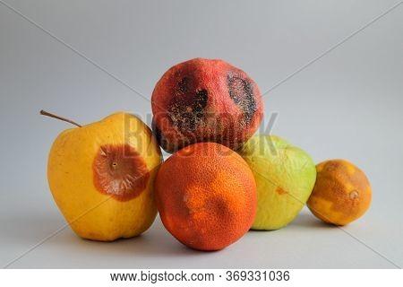 Lots Of Fruits That Have Gone Bad. Food Mold. Fridge Fungus. Apple, Pomegranate, Orange And A Lemon