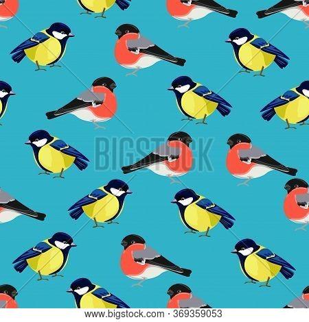Titmouse Bird And Bullfinch Print Design With Drawn Birds For Textiles.
