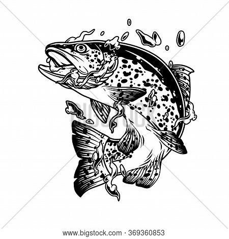 Vintage Concept Of Trout Fish In Water Splashes Bubbles And Drops On White Background Isolated Vecto
