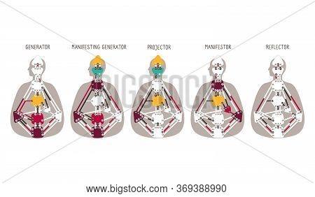 Generator Projector Manifestor Reflector. Five Human Design Types.human Design Bodygraph Chart. Vect