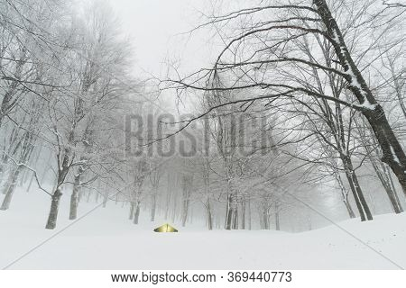 winter camping in snow forest of Nebrodi Mountains natural landmark in Sicily travel adventure wild outdoor