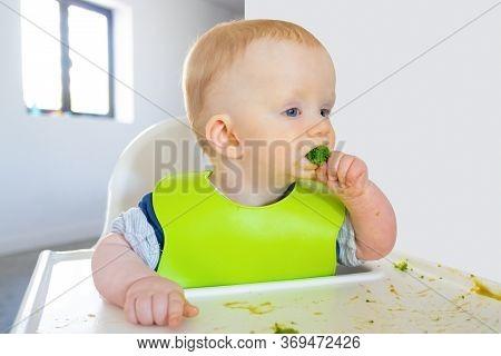 Pensive Baby Biting Broccoli Piece, Making Messy On Tray. Little Child Wearing Plastic Bib, Sitting
