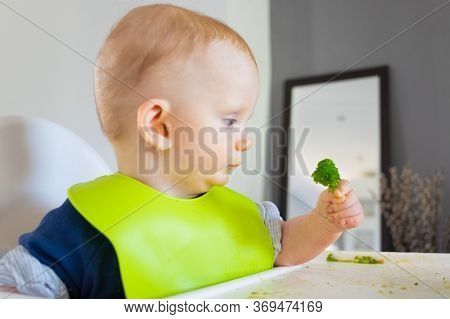 Cute Baby Holding Green Vegetable Piece, Eating Broccoli By Herself. Little Child Wearing Plastic Bi