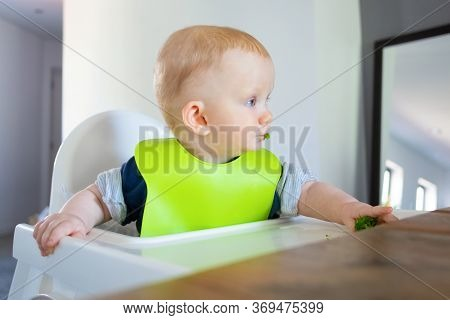 Red Haired Baby Eating Vegs By Herself, Taking And Chewing Broccoli. Little Child Wearing Plastic Bi