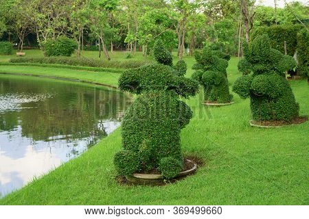 Happy Elephants Shape Bush Standing On Lawn Near A Pond In Public Park And Trees On Background