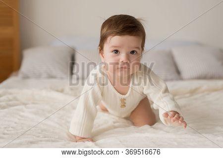 Baby Boy Sitting On Crib. Children Protection Day. Happy Childhood. Early Child Development. Educati