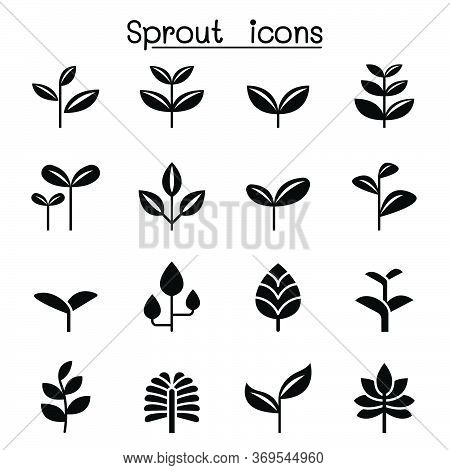 Sprout, Plant, Treetop, Leaf Icon Set Vector Illustration Graphic Design