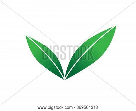 Green Sprout Illustration. Sprout Leaves Vector Icon For Web, Mobile, Ui.