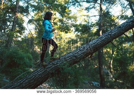 A Woman Walks Along The Trunk Of A Fallen Tree In The Forest. Girl Catches Balance. Walk Through The