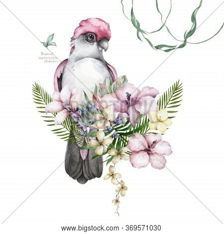 Pink And Grey Cockatoo Parrot And Floral Exotic Illustration, Tropical Leaves. Hand Drawn Watercolor