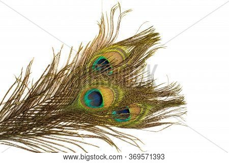 Several Peacock Feathers On White Background. Symbol Of Beauty, Balance, Third Eye, Perception, Immo