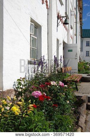 Solovki, Republic Of Karelia, Russia - August, 2017: The Flower Near The Wall Of Solovki Monastery